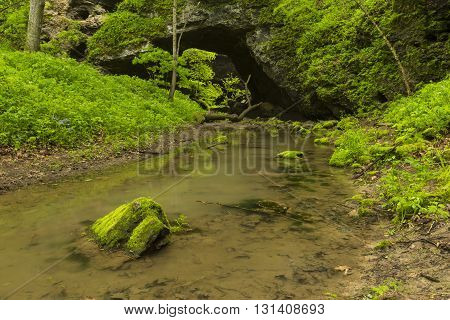 A stream flowing from a cave arch during spring.