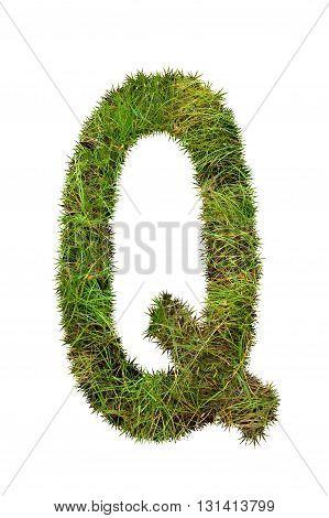 fresh green grass letter on white background - Q