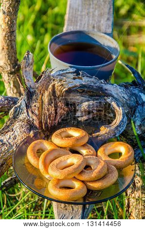 Early spring morning. morning fog. Fresh green grass . on the bench is a cup of tea and a plate of bagels . Tea comes from steam. shop through the tree sprouted and withered.
