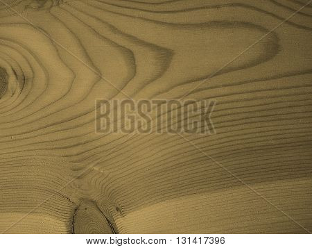 Larch Wood Background Sepia