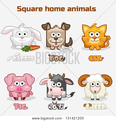 cute cartoon square Home animals in vector