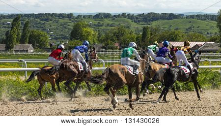 PYATIGORSK, RUSSIA - MAY 22: Start gates for horse races for the prize of Letni in Pyatigorsk, Caucasus, Russia on May 22,2016 .