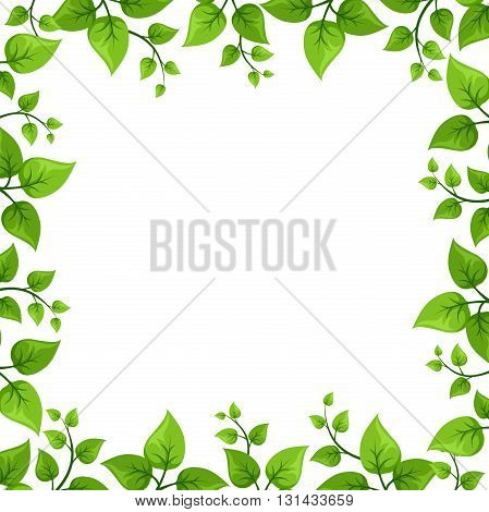 Vector background frame with green leaves on white.