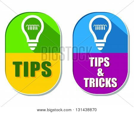 tips and tricks with bulb symbols, two elliptic flat design labels with icons, business support concept signs, vector