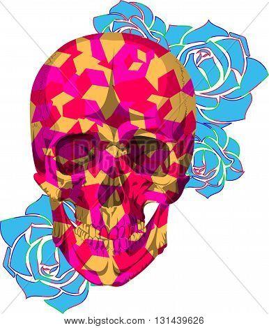 human colors kube skull bones skeleton dead anatomy illustration