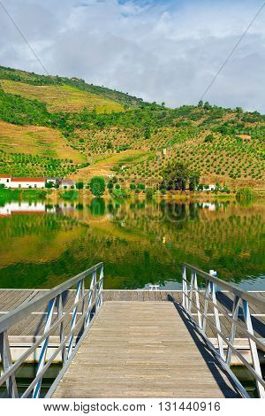 Mooring Line on the River Douro Portugal