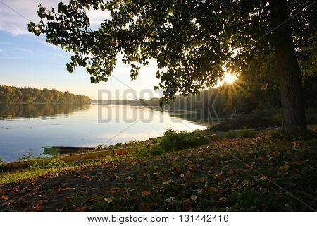 Beautiful nature around Sava river close to BelgradeSerbia