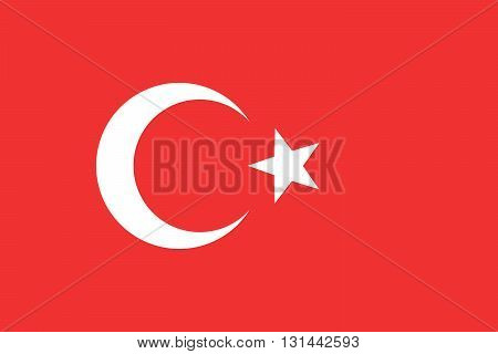 Flag of Turkey. Turkey flag vector illustration.