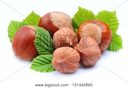 Filbert nuts with leaf on white background . Halzelnuts.