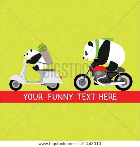 Funny pandas motocycle delivery service vector illustration