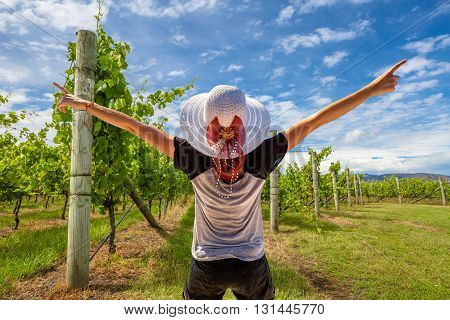 Back of happy woman with white wide-brimmed hat, shirt and black shorts enjoys raising her arms for the grape harvest in vineyard farmland.