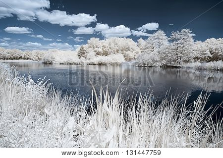 Landscape of the english countryside in infrared looking like frost and snow