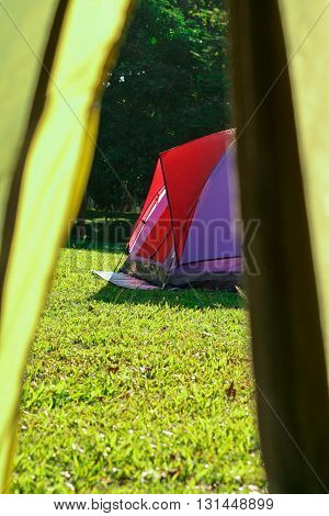 A colorful tent on green grasses (view point from another tent)