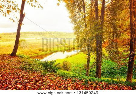 Autumn foggy landscape - view of valley of Soroti river in Pushkinskiye Gory Russia soft focus procesisng