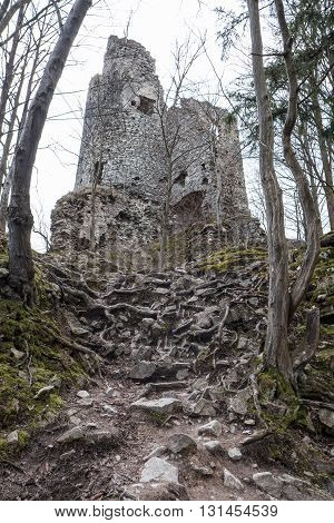 Ruins of Castle STARY HRAD at Slovakia