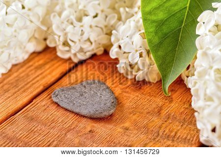 Heart Shaped Grey Stone Next To Lilac Blooms