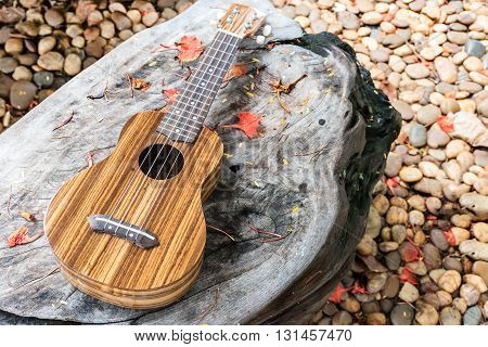 The ukulele on wooden table with stone background in the garden