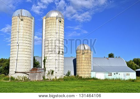 A large dairy operation stands idle with large concrete silos standing empty