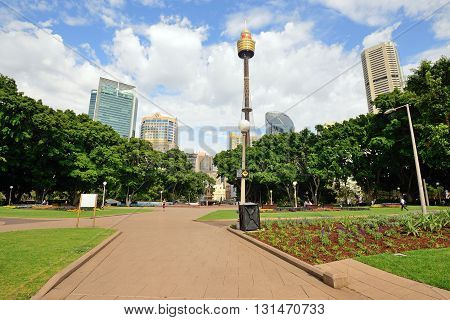 SYDNEY AUSTRALIA - OCTOBER 21 2015: View of Sydney tower and skyline from Hyde Park. Hyde park is the oldest public parkland in Australia.