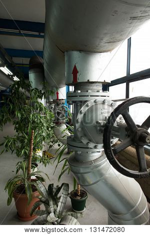 greenery and flowers in industrial plants in boiler room