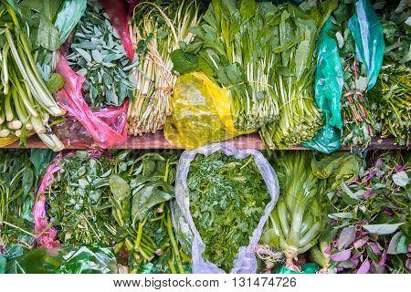Supermarket shelf, Fresh organic herbs on display