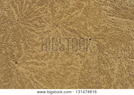Crab markings on beach sand. For background.