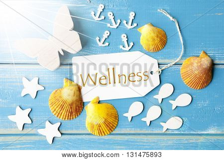 Flat Lay View Of Label With English Text Wellness. Sunny Summer Greeting Card. Butterfly, Shells And Fishes On Blue Wooden Background