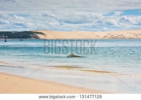 View of The Arcachon Bay and The Duna of Pyla Aquitaine France