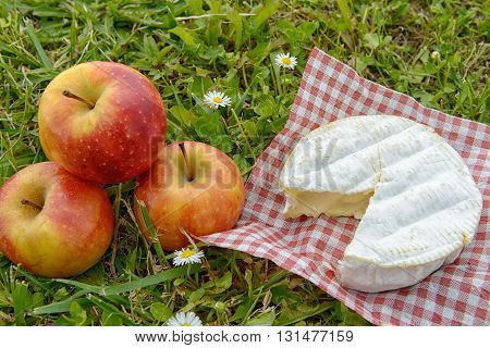 a camembert cheese with apples on grass