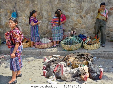 QUETZALTENANGO GUATEMALA APRIL 28 2016 : People sell turkeys in Quetzaltenango maket. This native market is the most colorful in Central America