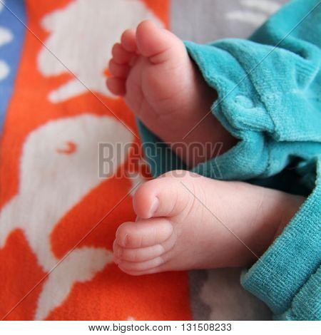 baby boy legs