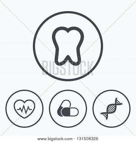 Maternity icons. Pills, tooth, DNA and heart cardiogram signs. Heartbeat symbol. Deoxyribonucleic acid. Dental care. Icons in circles.