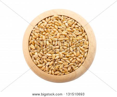 Wheat pile in wood plate isolated on white background Save clipping path.