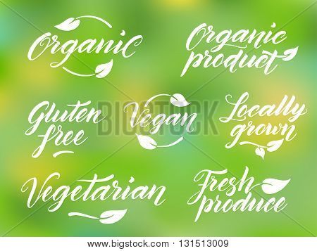 Hand drawn healthy food brush letterings. Organic, organic product, gluten free, vegan, locally grown, vegetarian, fresh produce. Label, logo template against blurred background.