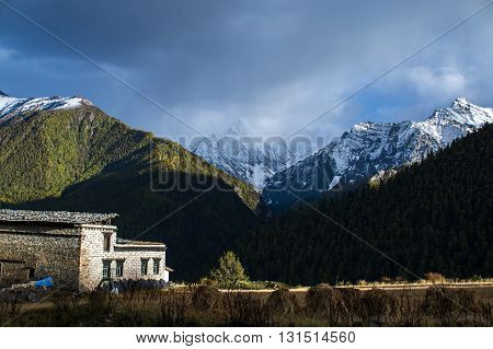 Daocheng China - October 21 2015: Farmland in Yading village at Daocheng Township Sichuan Province China on October 21 2015. Yading Village is composed of mountains farmland birch forest and hamlet.