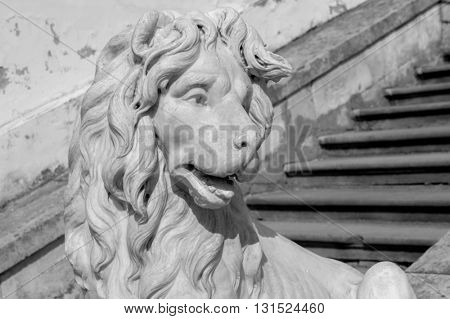 Lion metal Statue