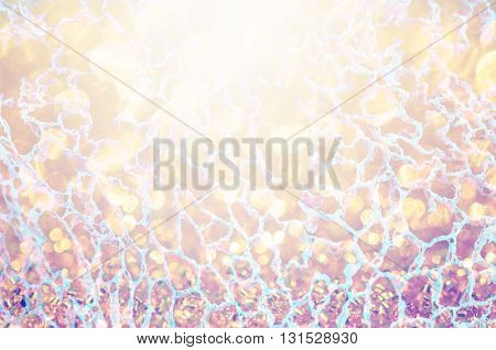abstract net structure made by nature as background.