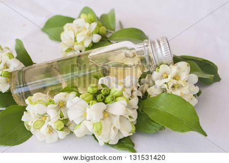 natural herbal oils the fragrance of the flowers