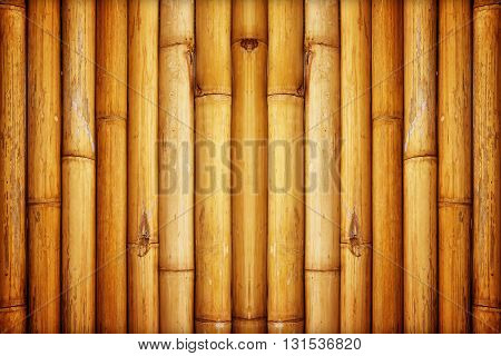 The bamboo fence background or texture, natural bamboo background