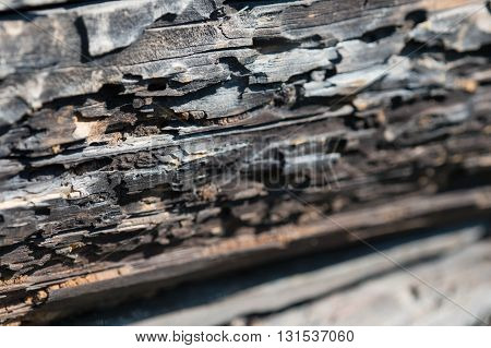 Old Wooden Wall From Logs As Background