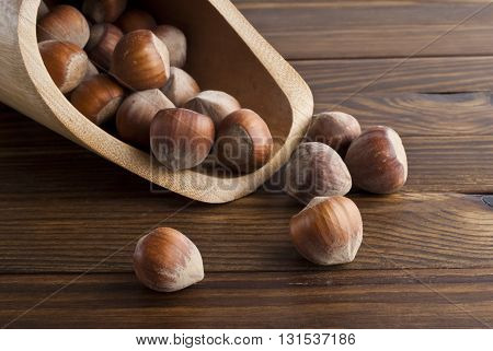 Hazelnut and hazelnut in a scoop on a wooden background