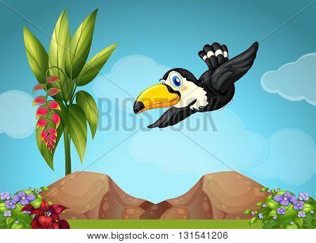 Toucan flying in the garden illustration