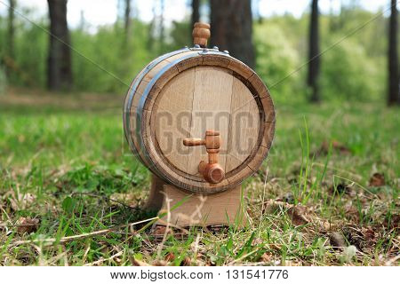 Oak wine barrel on green grass in forest