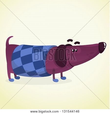 Cartoon Vector Illustration of Cute Purebred Dachshund Dog in sweater. Isolated on white background