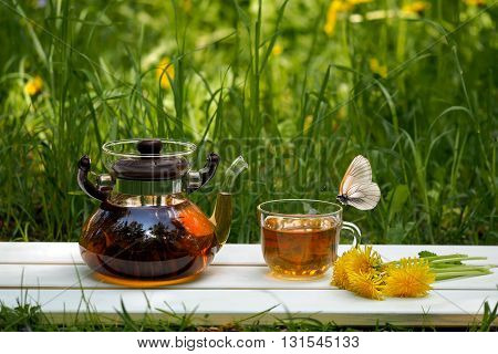 Tea party on the nature. Teapot, cup of dandelion flowers on a background of green grass. White butterfly sitting on a cup of green tea outstretched proboscis.