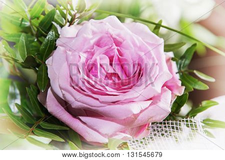 Bouquet of one pink rose. Lovely gift. Symbolic object. Gift of love. Pink petals. Close up natural scene.