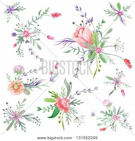 Set of botanical bright floristic vignette compositions isolated on white background for wedding, event design