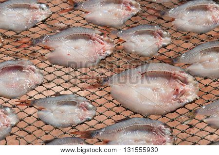Dried salted fish fillet.Sun drying method of preserving food.