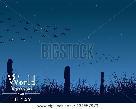 Vector illustration of Migratory birds day on night background