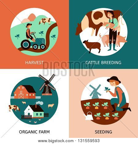 Organic farm 4 flat icons square banner with cattle breeding sowing and harvesting abstract isolated vector illustration